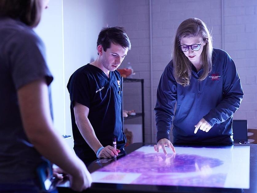 Health students diagnose symptoms on a simulation